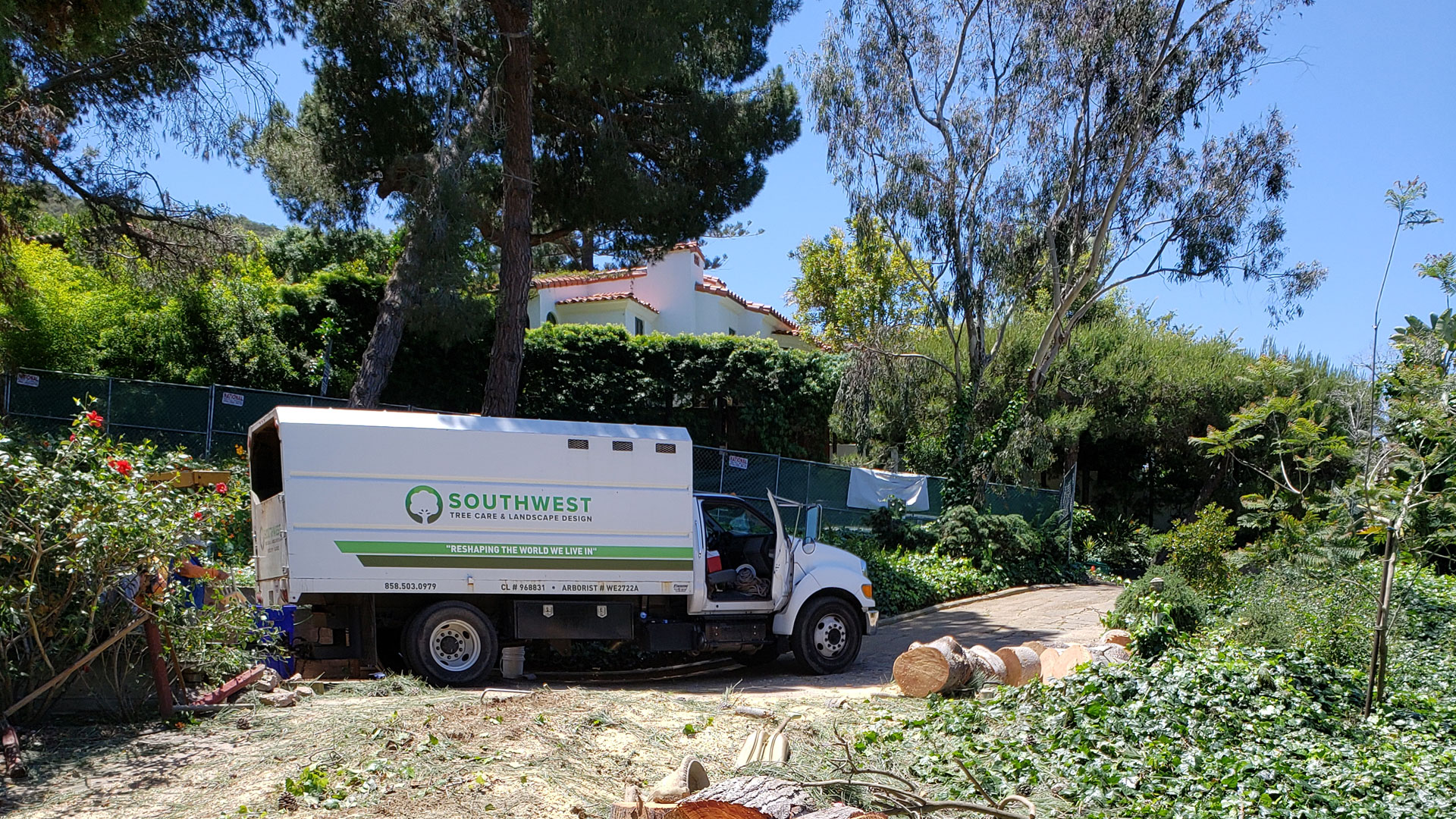 One of our certified arborists caring for a tree in Encinitas, CA.