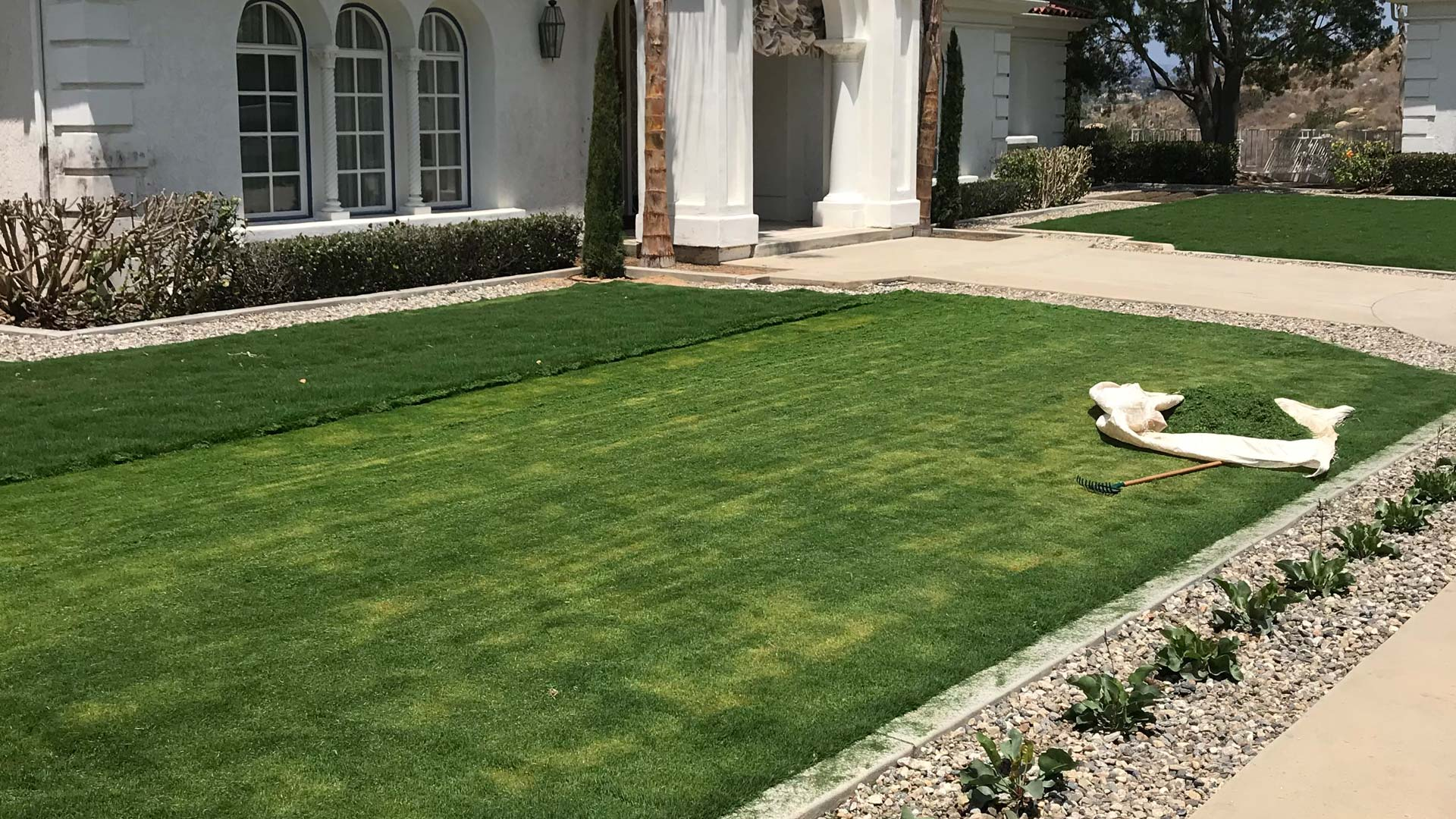Our team mowing the front lawn of a home in Carlsbad, CA.