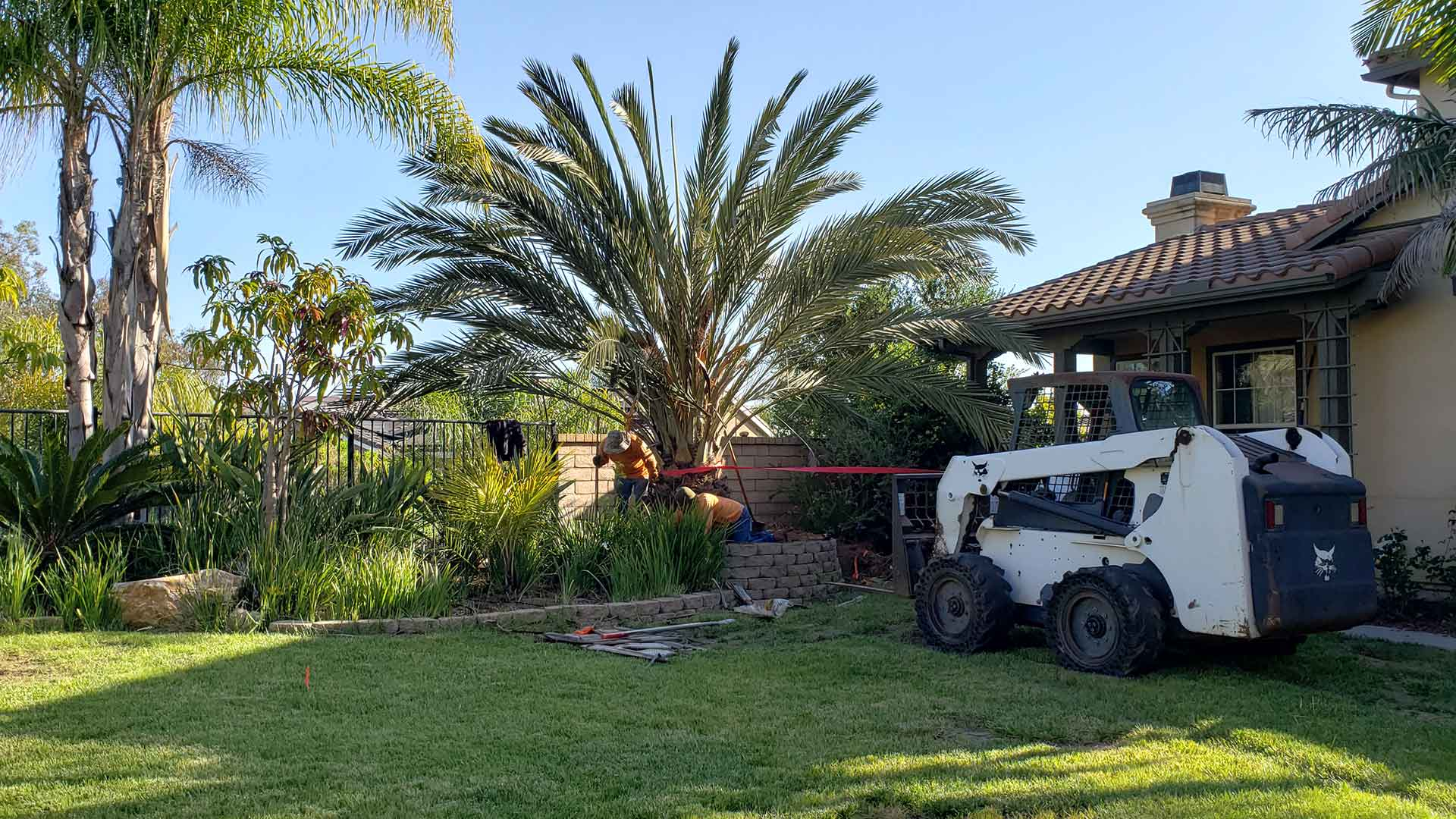 Installing new landscaping at a home in Solana Beach, CA.