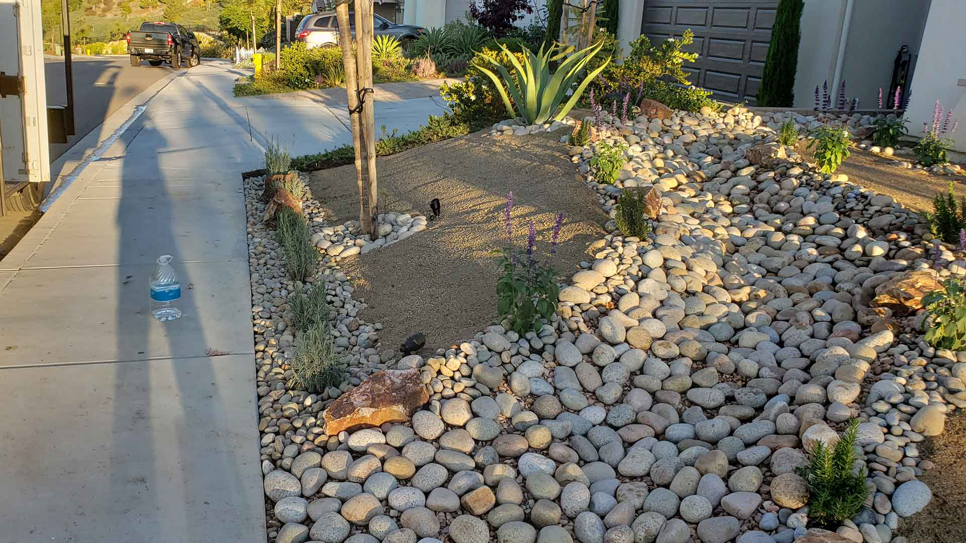 Xeriscaping and dry creek bed in Del Mar, CA.