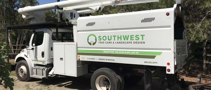 About Southwest Tree Care & Landscape Design