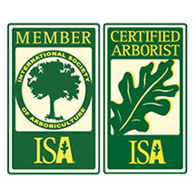 Member and certified arborist of the International Society of Arboriculture